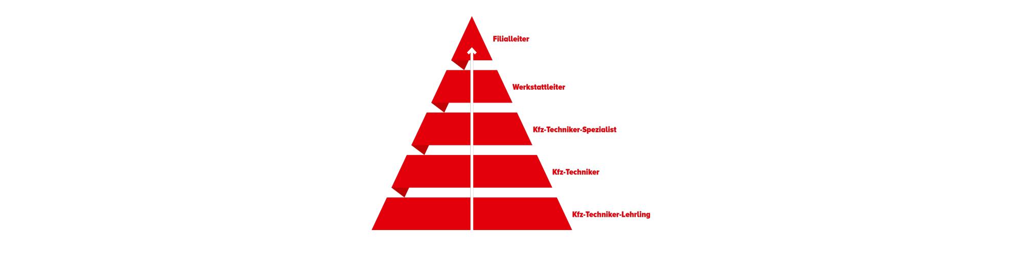 Ausbildungskonzept - Hierarchiestufem